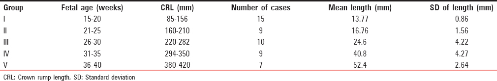 Table 1: Mean length of the urinary bladder at different fetal age groups